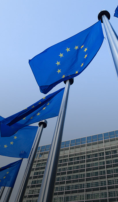 22 Months of IDD: Europe, What's Next?