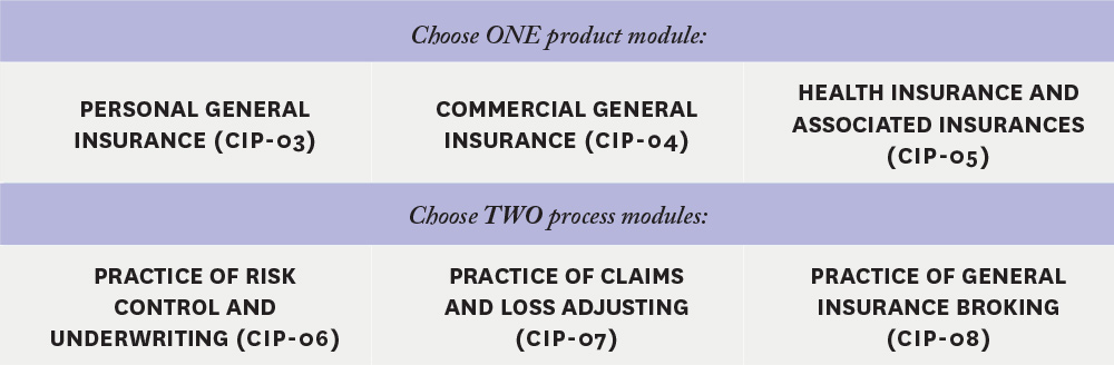 Certified Insurance Practitioner Cip The Insurance Institute